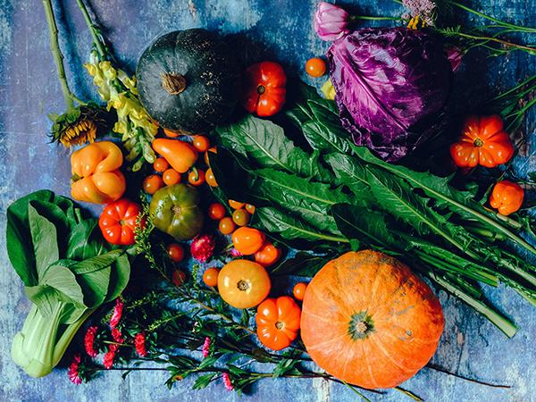 Démarche alimentaire sur le Sud-Gironde, groupement d'achat à Uzeste, aide aux producteurs locaux